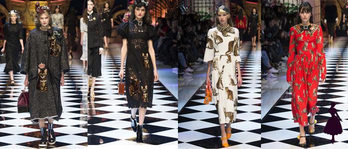 Moda Felina Dolce Gabbana